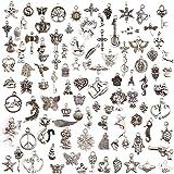 ZARRS 100 Pièces Breloques Argentées Mixte Charms Pendentifs,Accessoires de Bracelet Pendentif DIY Collier Bracelet Faire de