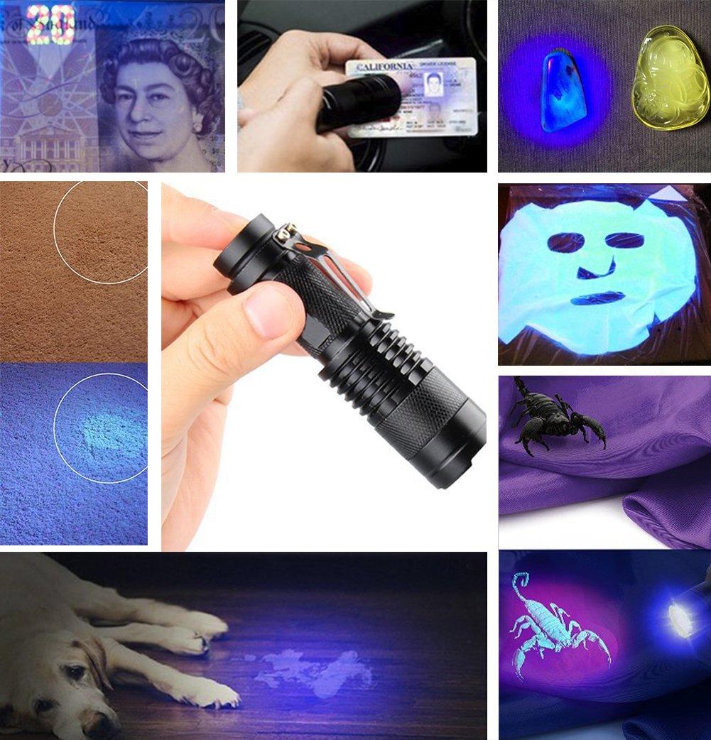 Linterna UV, Luz Negra, Ultravioleta pequeña mano 395 nm LED, Detector de orina para mascotas, perros y gatos, Lámpara…