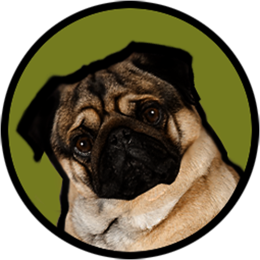 Pugzie Cute Pug Live Wallpaper Amazoncouk Appstore For Android