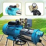DIFU Pompe centrifuge de 1300 W Pompe de jardin pour plantes aquatiques pour usage domestique 6000 l/h avec pression niveau d