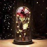 Joyhoop Rosa Eterna, Rosa Bella y Bestia, Elegante Cúpula de Cristal con Base Pino Luces LED, Regalos Para mama, Regalos dia