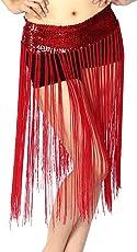 Lady's Belly Dance Stretch Sequins Fringe Tassel Brilliant Hip Scarf Clubwear Belt Skirt Free Size (Red)