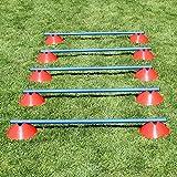 Mini-Hürden, 5er Set, mit roten Markiermulden und Stangen 100 cm, für Agility - Hundetraining (blau)