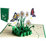 LIN 17554, POP - UP Karten, POP UP Karten Geburtstag, 3D Grußkarten 3D Karte Klappkarte Geburtstagskarte Viel Glück Gute Besserung, Schmetterlinge, Margeriten, N310