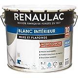 ruban adh/ésif couvercle et pinceau Rouleau /à peinture anti-goutte de qualit/é professionnelle avec seau 5 PI/ÈCES KIT SP/ÉCIAL TECPINT POUR APPLICATION DE PEINTURE INT/ÉRIEURE