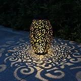Tomshine Solar Lanterns for Hanging Outdoor Garden Ornaments Waterproof Solar Garden Lights for Garden,Pation,Yard