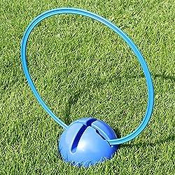 Superhund24 Kombi-X-Fuß mit Kombi-Ring 50 cm, in 4 Farben, für Agility-Training (blau)