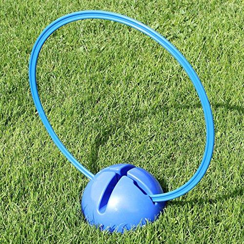 Superhund24 Kombi-X-Fuß mit Kombi-Ring 50 cm, in 4 Far… | 04260337373079