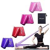Fitnessbanden, set van 4 elastische banden, gymnastiekband met draagtas, weerstandsband, weerstandsbanden met 4 trainingsband