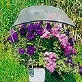 Beckmann Blumenkasten Regenschutz mit Folie von Ing. G. Beckmann KG auf Du und dein Garten