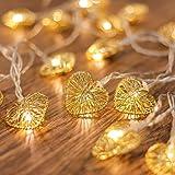 CozyHome Led-lichtsnoer met hartjes, 5 m stroomvoeding, 20 hartjes, warmwit, voor meisjes in de slaapkamer, op een bruiloft,