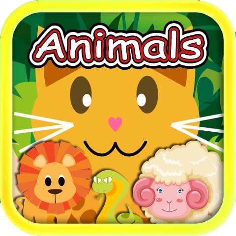 QCat-Preschool 8 in 1 Gioco educativo per il bambino e il bambino: Animal