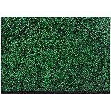 Clairefontaine 93244C - Un carton à dessin Annonay Fermeture élastiques 52x72 cm, Vert