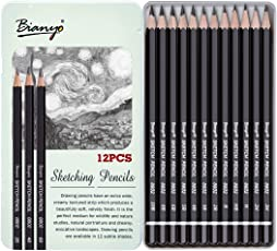 Bianyo Artist Quality Fine Art Drawing and Sketching Pencils (3H, 2H, H, HB, B, 2B, 3B, 4B, 5B, 6B, 8B, 10B), 12 Piece Set
