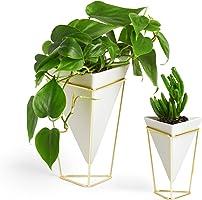 UMBRA Trigg, Jardinière de Bureau & Pot Géométrique – Idéal pour des Plantes Succulentes, des Plantes Aériennes, des Mini Cactus, des Fausses Plantes et Autres, Céramique Blanche/Laiton (Lot de 2)
