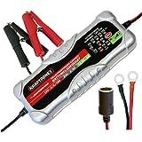 Dino KRAFTPAKET 10 A-12 V/24 V batteriladdare med kontinuerlig spänningsutgång IP20 för bil bil lastbil NKW Motorrard Quad AT