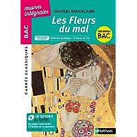 Livres Les Fleurs du Mal - BAC 2020 Parcours associés Alchimie poétique : la boue et l'or – Carrés Classiques Œuvres Intégrales PDF