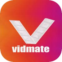 tips for viDomate