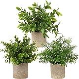 Delgeo Plantes Artificielles en Pot 3 pcs, Petites Plantes Intérieur Artificielles, Convient pour la Décoration de Mariage de