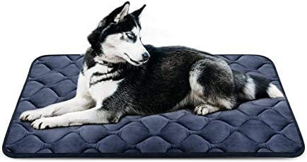 Comfy-High Quality Armor Filled 100% Waterproof Soft and Light Black Dog/Cat Mattress Bed-Large