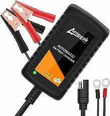 Ampeak 12V 750mA Caricabatteria e Mantenitore Batteria al piombo agm/gel, Caricatore Intelligente Automatico per Auto, Moto