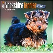 Yorkshire Terrier Puppies 2014 Wall Calendar