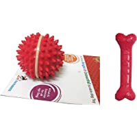 Foodie Puppies Dog Rubber Chew Toy Combo (Spike Ball Toy + Scented Paw Rubber Bone Toy) - Color May Vary