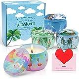 SCENTORINI Bougies Parfumées, Cire de Soja Naturelle, Cadeaux pour Soulager Le Stress et l'Aromathérapie Parfait pour Noël, l