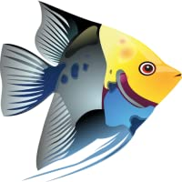 Tropical Fish Guide