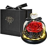 HelaCueil Fiore conservato Rosa Eterna con luci a LED e Confezione Regalo (Rosso)