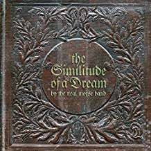 The Similitude of a Dream-Touredition [Vinyl LP]
