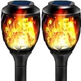 Torch Lights