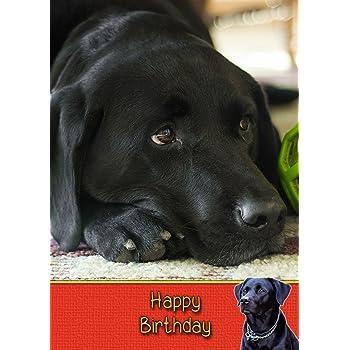 Black Labrador Birthday Card 8x55 Mix Match On Cards