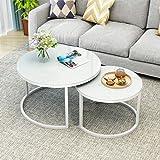 Priti Modern Engineered Wood and Metal Coffee Table Nero Set of 2 - White