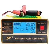 Etrogo Cargador de Coche 12V/24V 5 Fases 1A a 10A 200W Cargador de Pulso Inteligente con Función de Detección Automática + Re