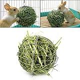 Hamster-Kaninchengrasball kann geh?ngt werden, um Ball mit h?ngenden Manschettenkn?pfen zu spielen