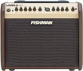 Fishman PRO-LBX-5 Loudbox Mini