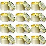 LA BELLEFÉE Bougie de Cactus, Bougie créative, Cadeaux pour Amoureux et Amis, Décoration de la Maison, Lot de 12