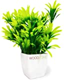 WoodZone Indoor Faux Artificial Desk Plant with Pot for Home Decoration Items, Guldasta (Size 10.5 inches, Green Jade)