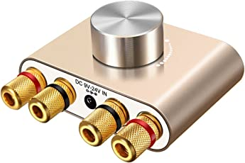 ELEGIANT Mini Bluetooth Verstärker HiFi Stereo Audio Wireless Bluetooth Endstufe 50W * 2 Dual Kanal Digital Signal Amplifier Aluminiumkörper mit Netzteil