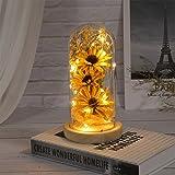 Mobestech Lampada Fiore Incantato Girasole Artificiale in Cupola di Vetro Lampada Fiore a LED per Festa della Mamma 1 Pz Gial