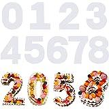SAVITA 9 Pièces 31cm 0-8 Numéro de Pochoirs à Gâteau, Modèles Plats en Plastique Numéro Moule Gâteau Coupe Pochoirs pour Bric