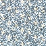 Fabulous Fabrics Baumwollstoff Falun Garten 1 — Meterware ab 0,5m — Oeko-Tex Standard 100 — zum Nähen von Blusen und Hemden, Tuniken und Kleidern