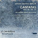 Bach: Cantatas 146, 33 & 103