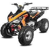 "Akp Carbon 150cc Quad 10"" Automatik CVT + Rückwärtsgang Offroad Bike ATV"