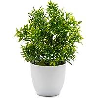 OFFIDIX Plantes Artificielles en Plastique Mini Plantes D'eucalyptus pour La Maison De Bureau Décoration Faux Plante…
