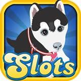 Como perros y gatos Slots Casino en Las Vegas Downtown Juegos de juego gratuito con tus amigos de Android y Kindle Fire