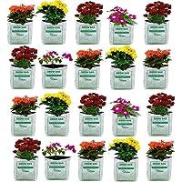 VITARA™ [ 18 Bags ] UV Treated Poly Grow Bags for Terrace Garden Vegetable Plants and More(White Outside Black Inside-18…