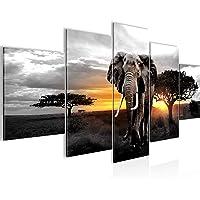 Bilder Afrika Elefant Wandbild 200 x 100 cm Vlies - Leinwand Bild XXL Format Wandbilder Wohnzimmer Wohnung Deko…