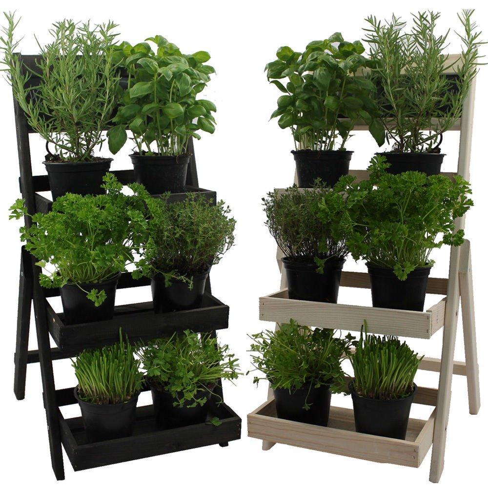 Escalera Para Flores De Madera Fsc Con Pizarra Para Hacer Anotaciones Madera Impregnada Resistente A La Intemperie Y Durable En Madera Natural